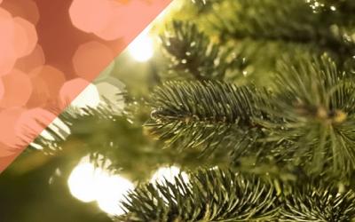 Feliz Navidad les desea el equipo de Integrative