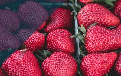Comidas altas en antioxidantes